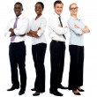 The elite business team — Stock Photo #12131110