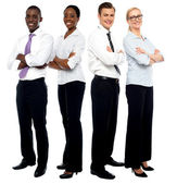 The elite business team — Stock Photo