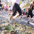 Royalty-Free Stock Photo: Unidentified runners in the Frankfurt Marathon on October 31, 2010 in Frankfurt, Germany. The race, currently sponsored by Commerzbank, is Germany's oldest city marat