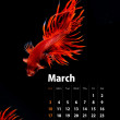 Stock Photo: 2013 Calendar A4 size, Siamese Fighting Fish concept
