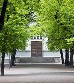教会、 树木、 小巷 — 图库照片