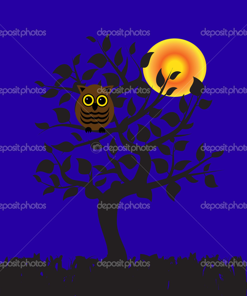 An owl sitting on a tree at night — Stock Vector #10915471