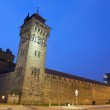 Cardiff Castle at Night — Stock Photo #10968283