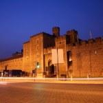 Cardiff Castle — Stock Photo #10968425