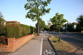 Bicycle and pedestrian path under trees — Stock Photo