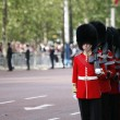 2012, Trooping the color — Stock Photo #11380901