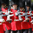 2012, Trooping the color — Stock Photo #11380910