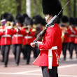 2012, Trooping the color — Stock Photo #11380990