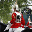 2012, Trooping the color - Stock Photo