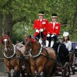 2012, Trooping the color — Stock Photo #11507141