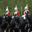 Stock Photo: 2012, Trooping color