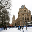 Stock Photo: Natural History Museum's Ice Rink