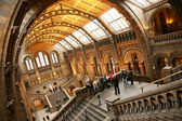 The Natural History Museum — Stock Photo