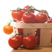 Tomatoes in basket isolated on white background — Stock Photo