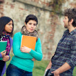 Multicultural College Students at Park — Stock Photo #11018688