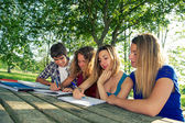 Teeneger students working together at park — Stock Photo