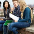 Multicultural College Students — Stock Photo #11445976