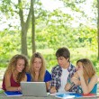 Group of young student using laptop outdoor,Italy — Stock Photo #11446085