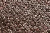 Old roof tiles — Zdjęcie stockowe