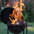 Stock Photo: Barbecue grill with open fire