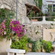 Small Garden in France — Stock Photo #10984478