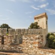 Fortress at Castiglione del Lago — Stock Photo #11099481