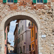 Entrance to Castiglione del Lago — Stock Photo #11099554