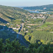 Rhone River Valley near Vienne — Stock Photo