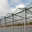 Sideview of a greenhouse in The Netherlands — Stock Photo