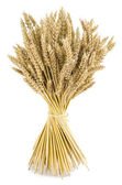 Wheat bouquet — Stock Photo