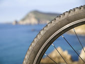 Mountain bike wheel with blurred landscape — Stock Photo