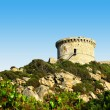 Genoese tower in Corsica — Stock Photo #11078475