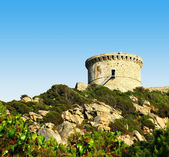 Genoese tower in Corsica — Stock Photo