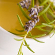 Golden honey with herbs - Stock Photo