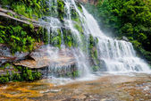 Waterfall, Blue Mountains National Park, NSW, Australia — Stock Photo