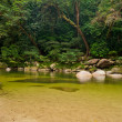 Mossman Gorge, Daintree National Park, Australia — Stock Photo