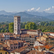 Lucca panoramic view, Tuscany, Italy — Stockfoto
