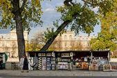 Paris Seine riverbank — Stock Photo
