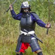 ������, ������: Samurai in armor with two swords