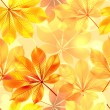 Autumn seamless background with leaves. Vector illustration. - Stock Vector