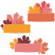 EPS10 Autumn maple leaves design. Vector illustration. — Stock Vector