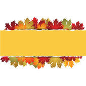 EPS10 Autumn maple leaves background. Vector illustration. — Stock Vector