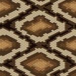 Seamless python snake skin pattern. Vector illustration. — Stock Vector #12140167