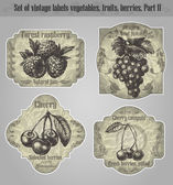 Vector set: vintage labels fruits, vegetables, berries - inspire — Stock Vector