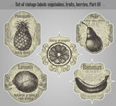 Vector set: vintage labels fruits, vegetables, berries - inspire — Stock Vector