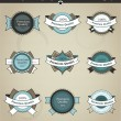 Vector set of retro labels, buttons and icons. — Imagen vectorial
