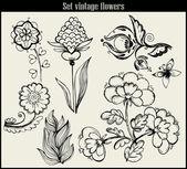 Flower set: highly detailed — Stock Vector