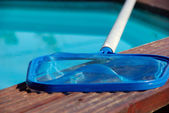 The swimming pool and its landing net — Stock Photo