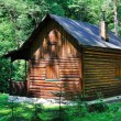 Stock Photo: Cabin in woods