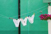 Drying underwear. — Stock Photo